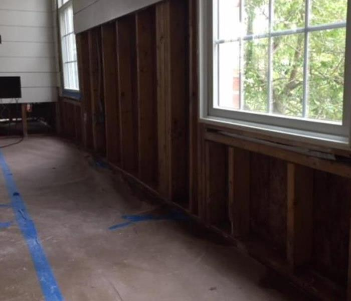 Mold Remediation in a Home After