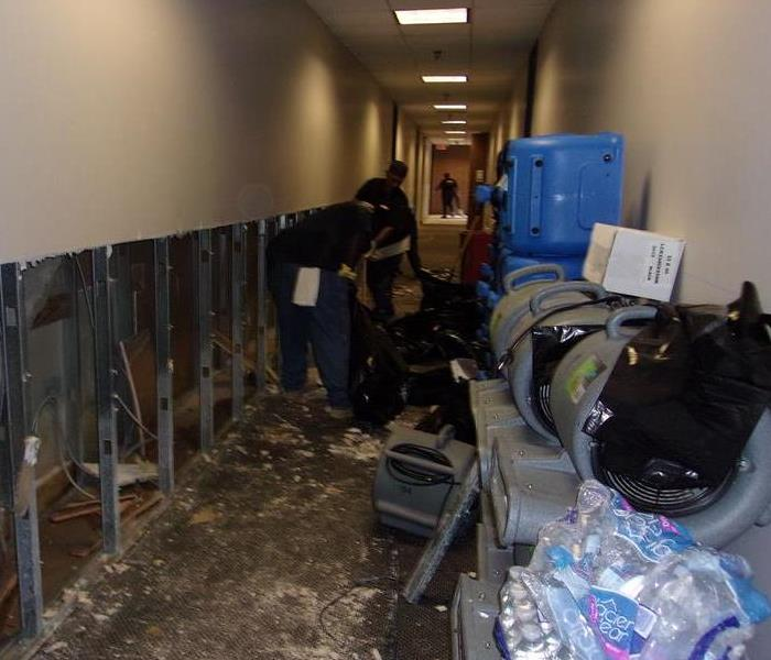 Commercial Mold Remediation Wall