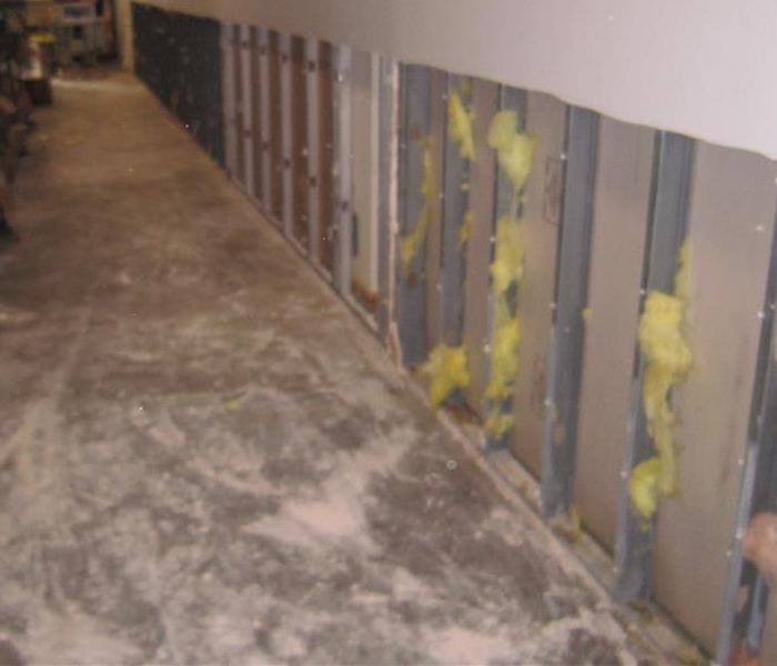 Fast Response to Mold Damage