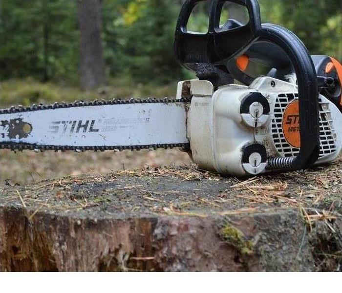 A chainsaw is shown on a tree stump